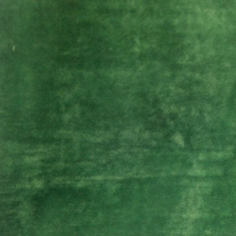 Финт forest